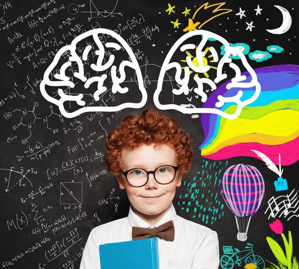 Beyin Temelli Eğitim 2 – Nörokimyasallar Ve Öğrenme